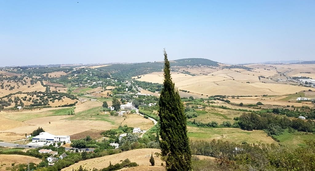 Scenic Andalusia, the picture was taken from the hill of Vejer de la Frontera