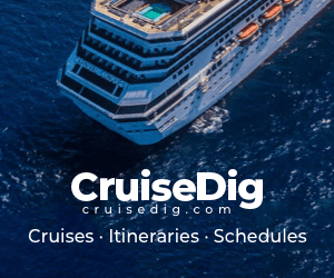 Cruise Dig banner